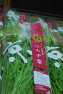 水菜(11・10)