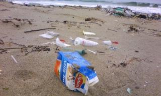 漂着する不燃ゴミ