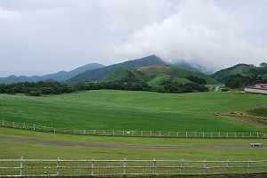 草原です!