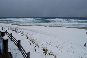 琴引浜積雪