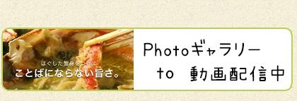 photoギャラリー・動画配信 口コミを見る・投稿する